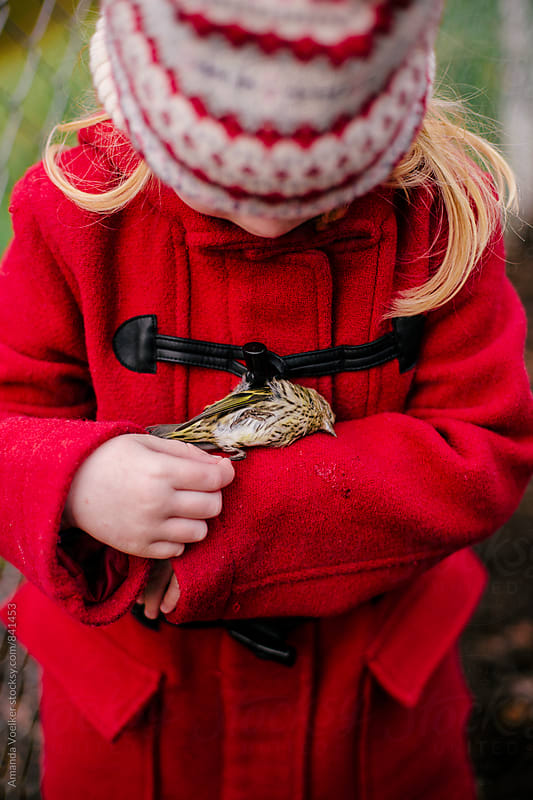 A Young Girl in a Red Coat Cradles a Dead Bird by Amanda Voelker for Stocksy United