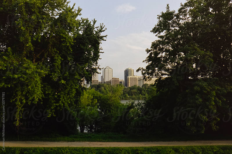 Framed Rosslyn Virginia Skyline from the C&O Canal in Georgetown by Cameron Whitman for Stocksy United