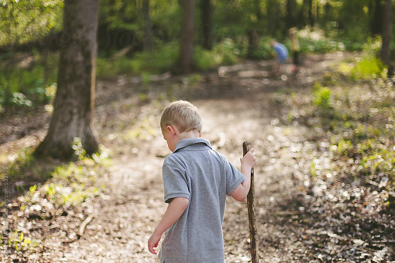 Young boy holding walking stick looks down at nature trail by Amanda Worrall for Stocksy United