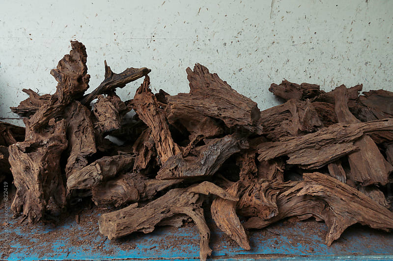 Pile of drift wood for aquarium decoration by Alita Ong for Stocksy United