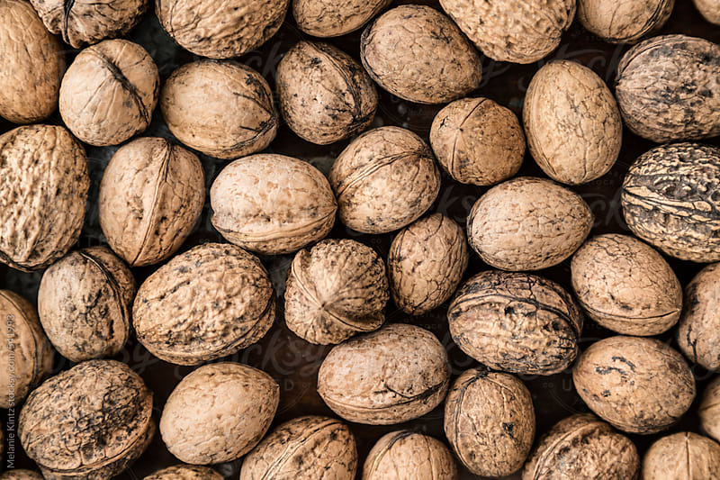 Background from garden harvested walnuts by Melanie Kintz for Stocksy United