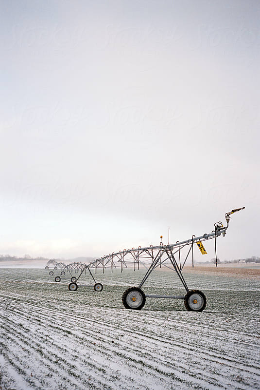 Irrigation Sprinkler by Dave Waddell for Stocksy United
