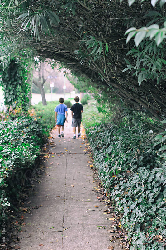 Two boys walking down path under tree branches by Monica Murphy for Stocksy United