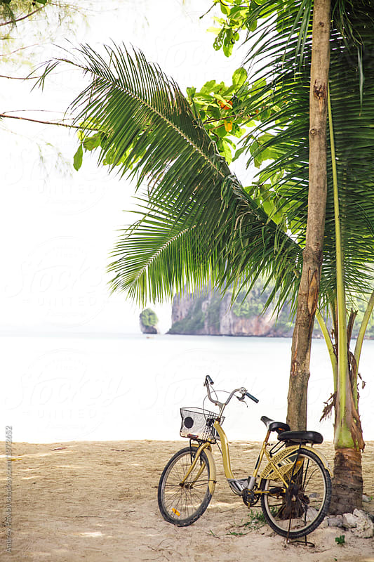 Bicycle parker near palm tree on beach by Andrey Pavlov for Stocksy United