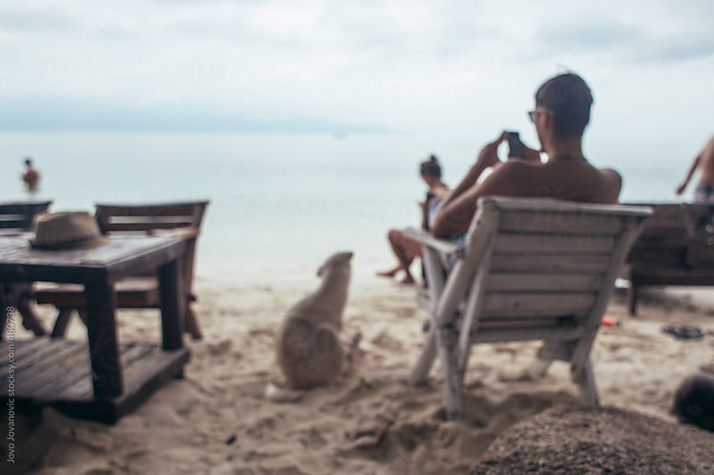 Dog and man sitting on a beach by Jovo Jovanovic for Stocksy United