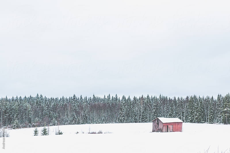 winter barn by Andreas Gradin for Stocksy United