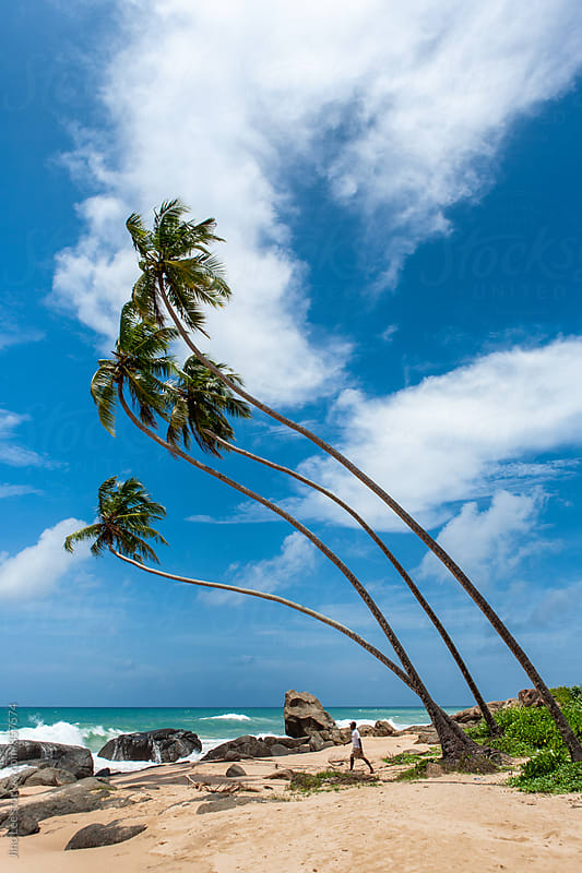Hikkaduwa beach, Sri Lanka by Jino Lee for Stocksy United