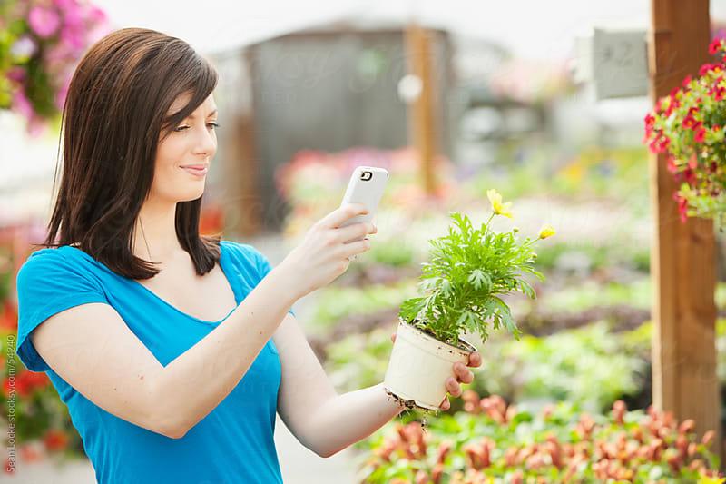 Nursery: Taking a Phone Photo of a Plant by Sean Locke for Stocksy United