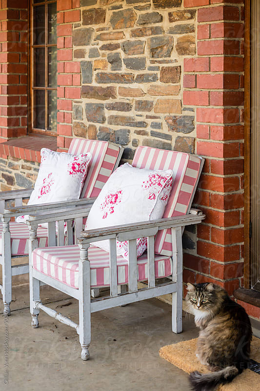verandah with vintage chairs and a cat by Gillian Vann for Stocksy United