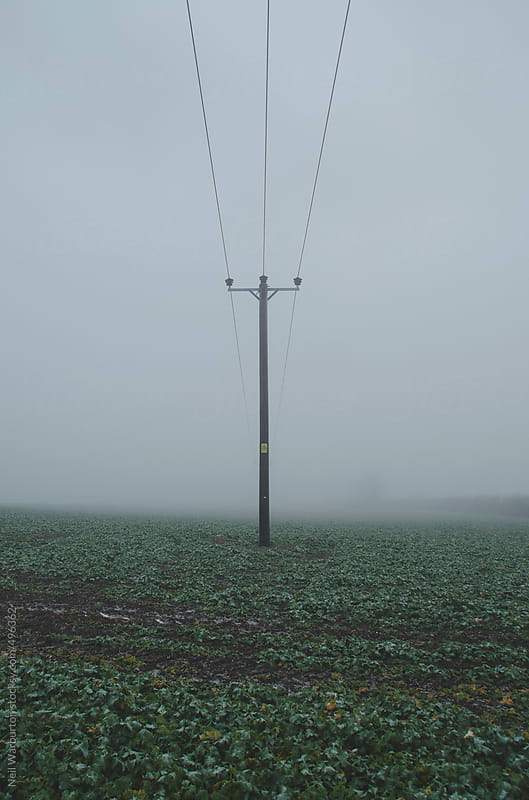 Pylon in the mist by Neil Warburton for Stocksy United
