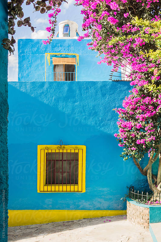 Colorful blue Mexican house with yellow trim and flower garden by Per Swantesson for Stocksy United