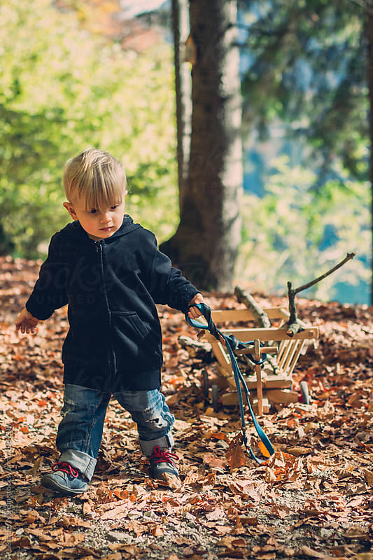 toddler playing with his handcart in an autumnal forest by Leander Nardin for Stocksy United
