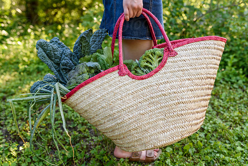 girl carrying bag of vegeetables by Deirdre Malfatto for Stocksy United