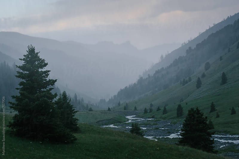 Lush mountain valley in on foggy evening by Matthew Spaulding for Stocksy United