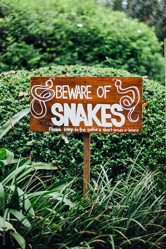 Beware of Snakes Sign by Kara Riley for Stocksy United