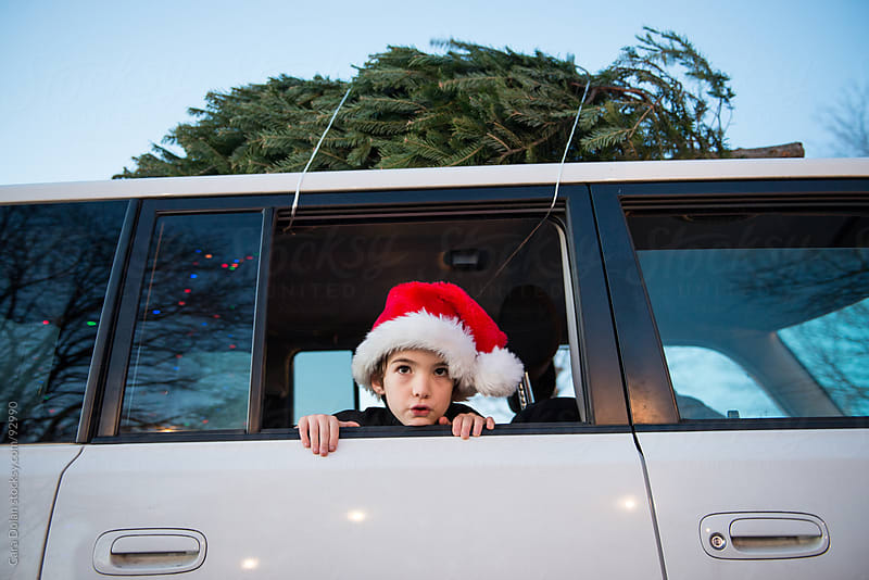 Boy wearing Santa hat peeks out the window of a car with a Christmas tree strapped on top by Cara Dolan for Stocksy United