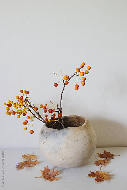 branches with berries in clay pot with dry leaves on white shelf by Tana Teel for Stocksy United