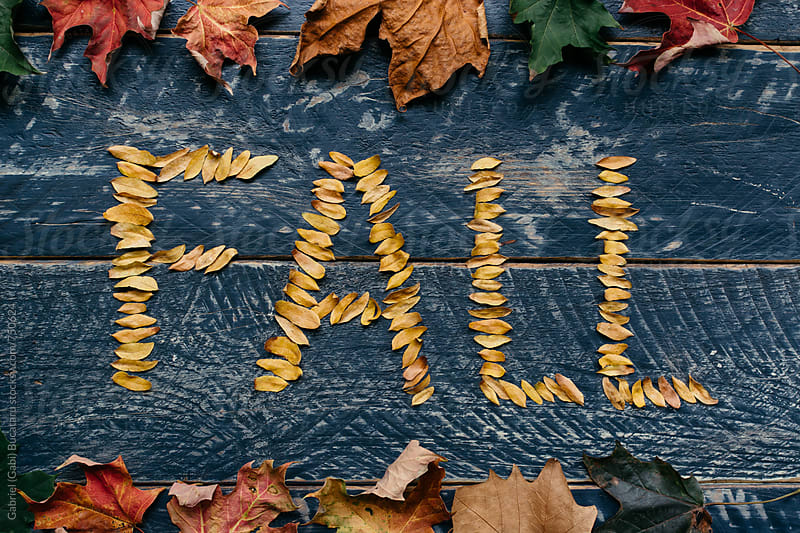 Fall spelled out with yellow leaves on a blue table by Gabriel (Gabi) Bucataru for Stocksy United