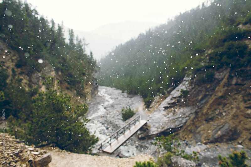 A wooden bridge in a mountain forest on a rainy day by Denni Van Huis for Stocksy United