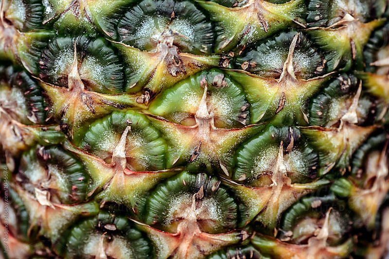 pineapple,close up by Igor Madjinca for Stocksy United
