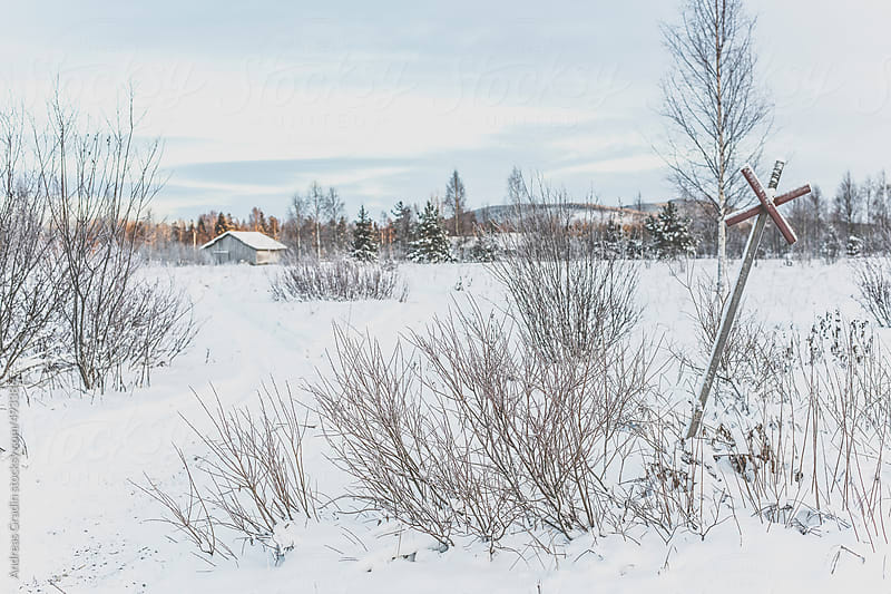 snowmobile trail in the north of sweden by Andreas Gradin for Stocksy United