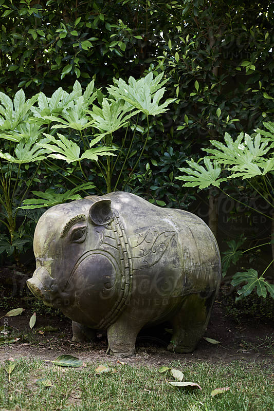 Balinese Wooden Pig by Skyler Dahan for Stocksy United