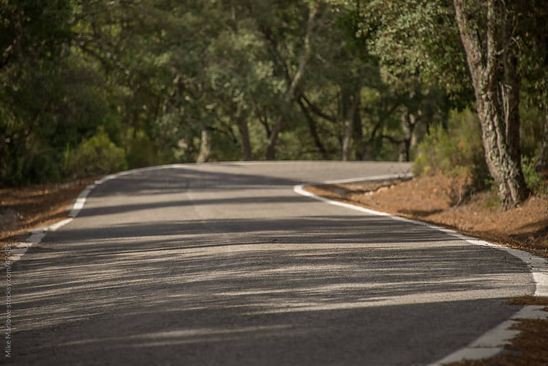A winding curve of a road running through a forest. by Mike Marlowe for Stocksy United