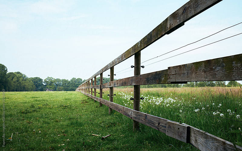A fenced, green field by Paperclip Images for Stocksy United