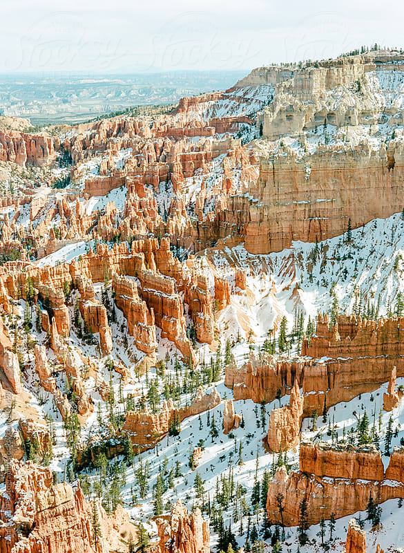 Snowy Bryce Canyon by Daniel Kim Photography for Stocksy United