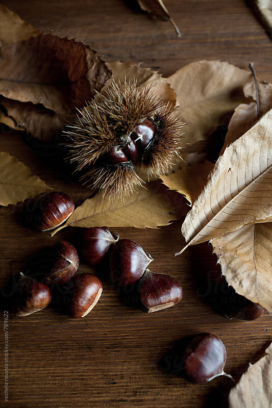 Chestnuts and leaves on wooden table by michela ravasio for Stocksy United
