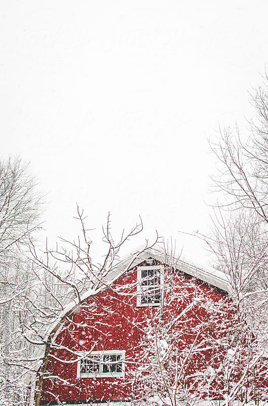 Looking up at abandoned red barn on a snowy day by Lindsay Crandall for Stocksy United