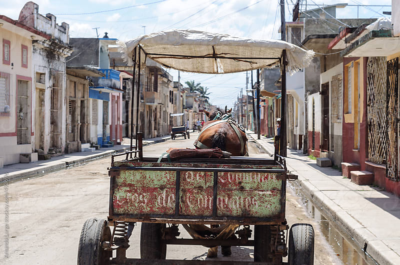 Brown horse pulling a cart down a street in Cardenas, Cuba by Amanda Large for Stocksy United