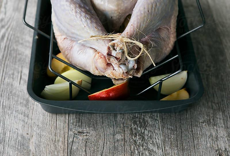 stock photo: raw turkey