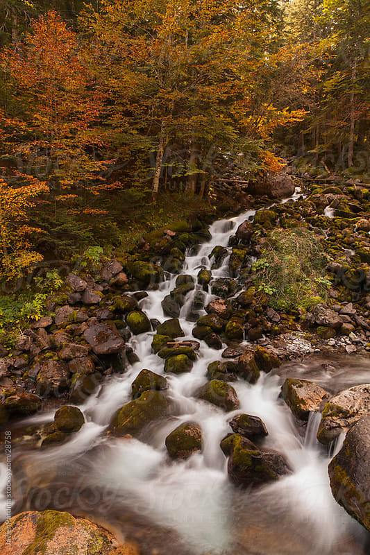 Big waterfall in the woods in autumn by Javier Pardina for Stocksy United