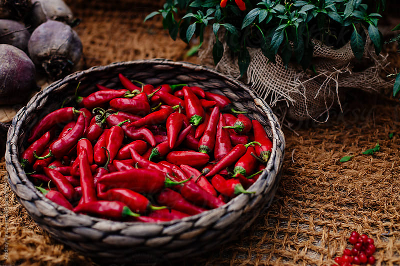 Red pepper on a rustic background by Andrey Pavlov for Stocksy United