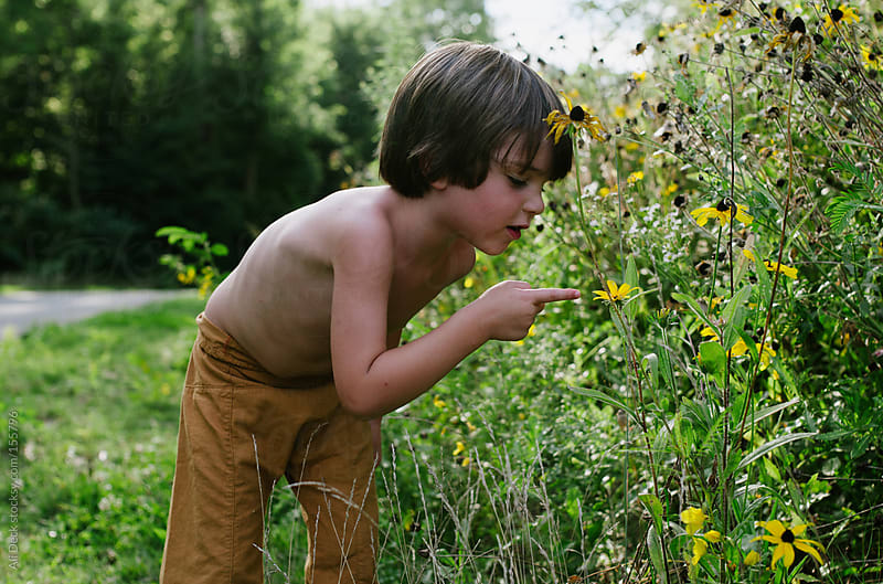 Boy looking at Yellow Flowers by Ali Deck for Stocksy United