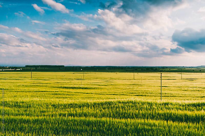 landscape with beauty sky on the fields by Javier Pardina for Stocksy United
