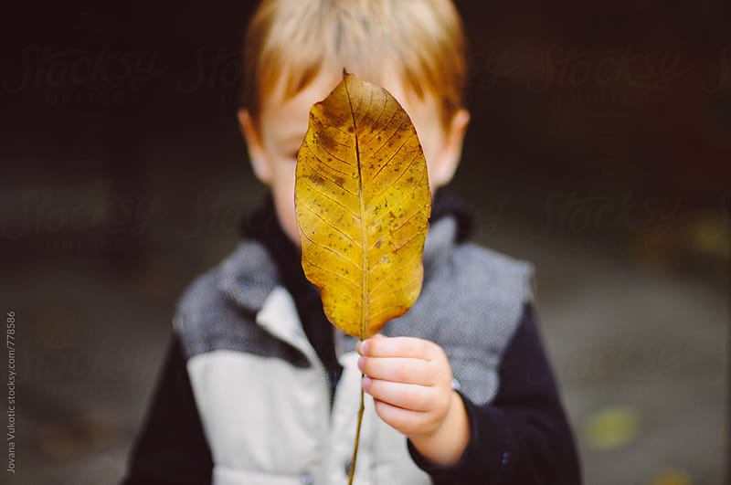 Kid with leaf by Jovana Vukotic for Stocksy United