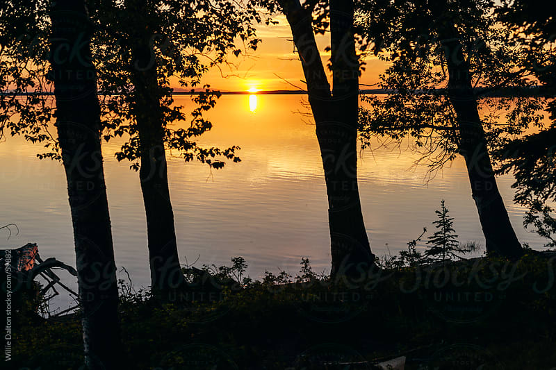 Trees Silhouetted by the Setting Sun over a Calm Lake by Willie Dalton for Stocksy United