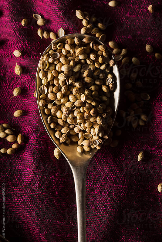 Coriander Seed on Purple in Spoon by Jeff Wasserman for Stocksy United