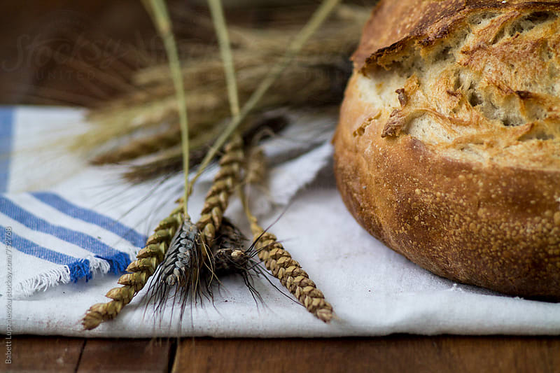 Handmade rustic breads and wheatear by Babett Lupaneszku for Stocksy United