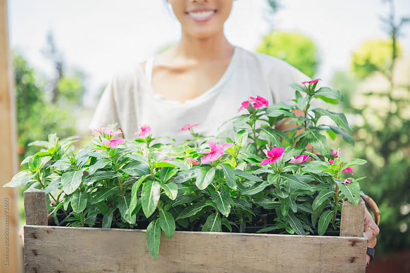 Smiling Asian Woman Holding Flowers by Lumina for Stocksy United
