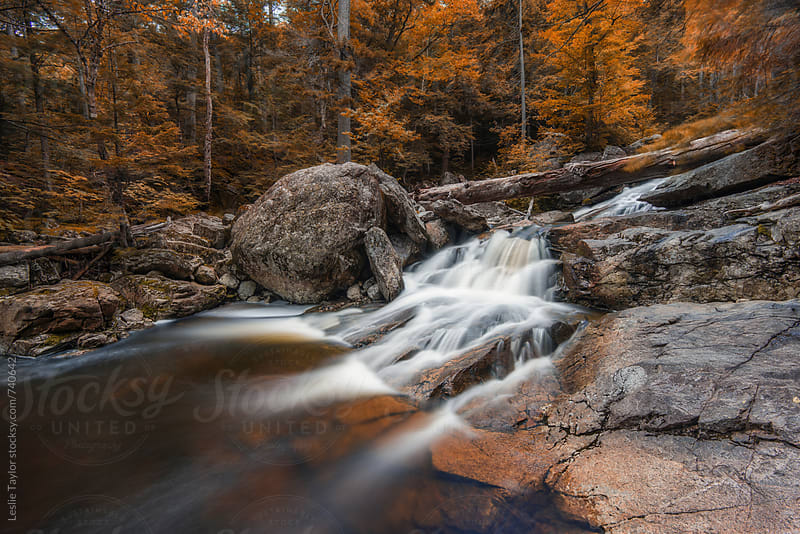 Autumn Colors Along A Rocky River by Leslie Taylor for Stocksy United