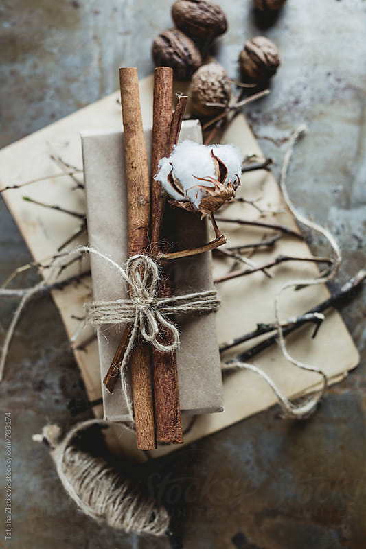 Gift with cinnamon and cotton by Tatjana Ristanic for Stocksy United