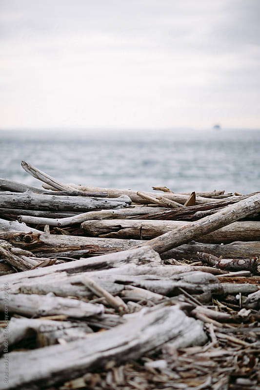 Driftwood on Whidbey by Brad and Jen Butcher for Stocksy United
