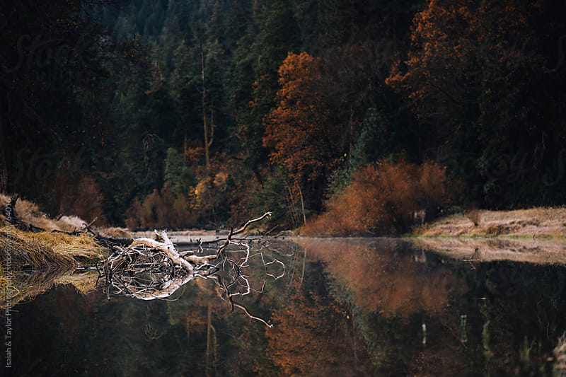 Lake reflection by Isaiah & Taylor Photography for Stocksy United