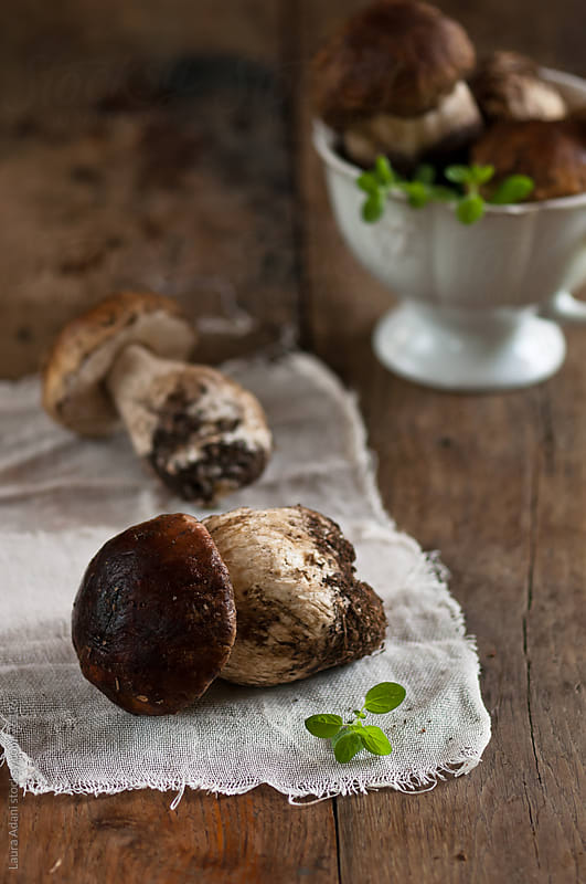 some porcini mushrooms on a table by Laura Adani for Stocksy United