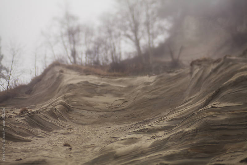 Sand, fog and trees on an embankment. by Cherish Bryck for Stocksy United