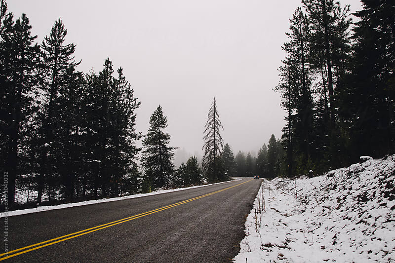 Lonely stretch of road in Northern Washington.  by Justin Mullet for Stocksy United