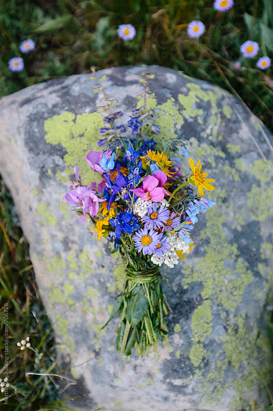 Bouquet of various wild flowers on lichen covered rock by Matthew Spaulding for Stocksy United